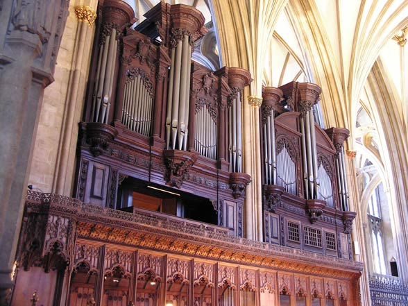 The Cathedral Organ